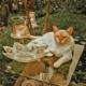Artwork für Peru (Lima) - relaxing Cat