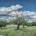 Superb1A Design - Artwork - Schweiz - Landschaften - Beeindruckende Wolkenformation (Safenwil - Mai 2021)